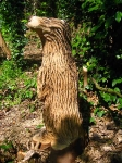 Badger Wood Sculpture on NCN Route 5 in Blacon